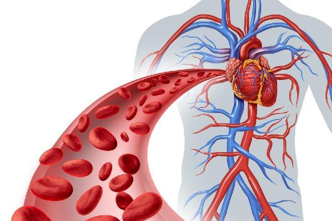 41c77ca2bd485 Artículos sobre Salud Cardiovascular - Cardiología