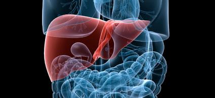 Síntomas, causas y tratamiento de la hepatitis