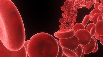 hematología enfermedades sangre