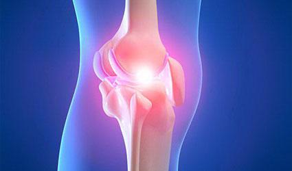 ligamento lateral externo
