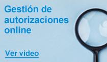 gestión de autorizaciones online promo