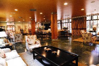 salon grande residencia mayores mirasierra